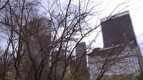 Dolly shot of trees partially covering distant buildings in New York City Footage