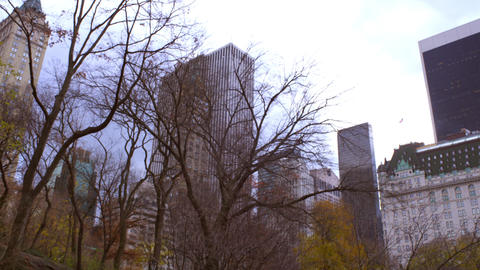 Panning shot of buildings behind trees in New York City Footage