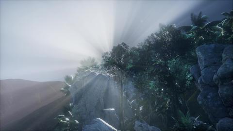 4k Amazing Sunrise at Palm Oil Tree Plantation. Aerial birds eye view. Thailand Footage