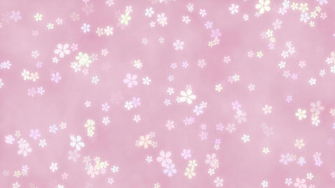 CherryBlossoms loop 01 Animation
