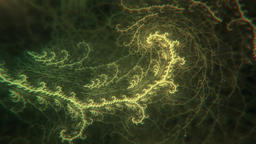 Abstract Plant-like Thin Fractal Slowly Growing and... Stock Video Footage