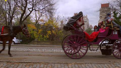 Panning, dolly shot of horse carriage rides in New York City Footage
