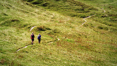 Swiss hikers on a trail through a meadow Footage