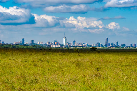 View of Nairobi park savannah with city Fotografía