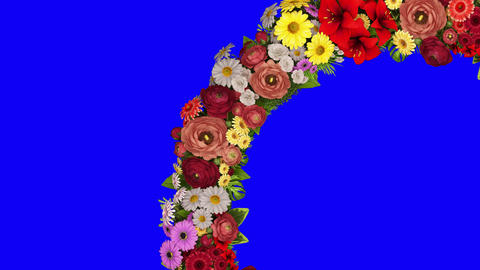 Animation of a swirling ring of flowers on a blue background. The chroma key. Loop video CG動画
