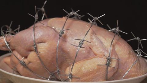 Genetically modified organism. GMO chicken on black background GIF