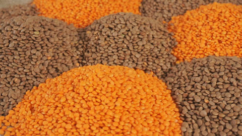 Red and green lentils. Natural organic lentils for healthy food Footage