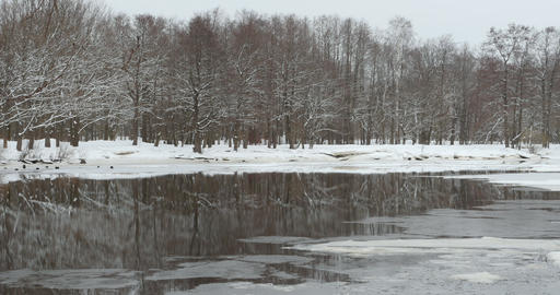 Winter forest reflected in the river Footage