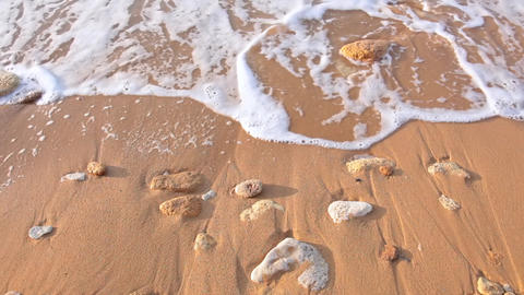 Morning Breaking Wave on a Sandy Beach. Close Up GIF