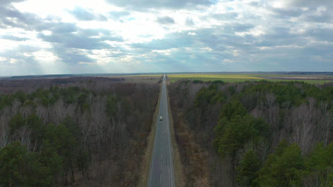 Sky view of autumn road with cars. Aerial view country road in autumn forest Footage