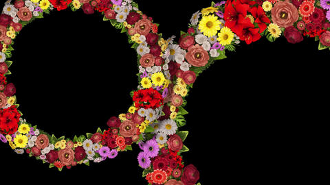 Animation of two swirling rings of flowers on a black... Stock Video Footage