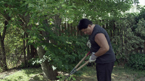 Man in yard trimming a tree pausing for chest pain Footage