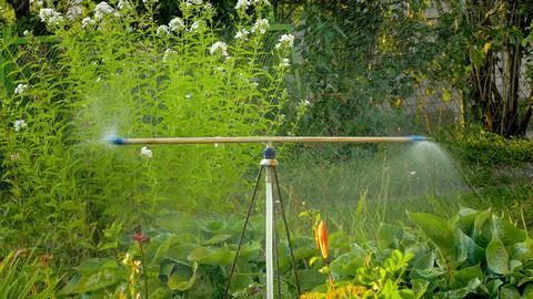 1080p Sprinkler in Garden Footage