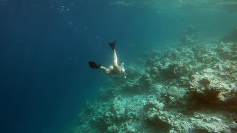 Woman Snorkeling Over Coral Reef And Swimming On Holidays Footage