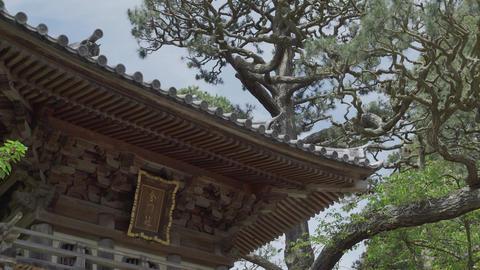 The roof in the Hagiwara Tea Garden in San Francisco Footage