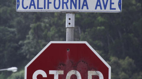 Tilting up shot of a stop sign to a street sign. California Ave Live Action