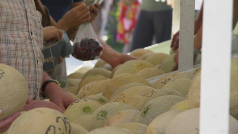 Tight shot of people selecting cantaloupe at a farmers market Footage