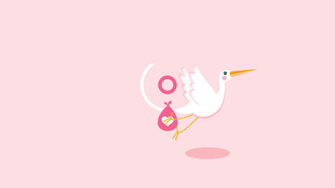 Stork - Baby Birthday Opener After Effects Template