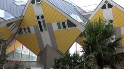Netherlands South Holland Rotterdam Cube House facade with palm tree Footage