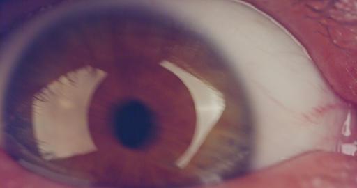 Extreme macro shot of a brown human eye Footage