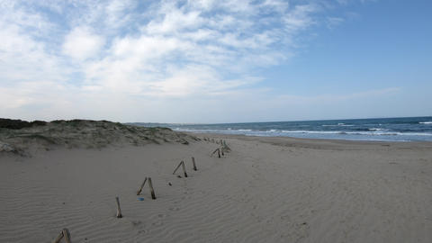 panoramic landscape of a beach Footage