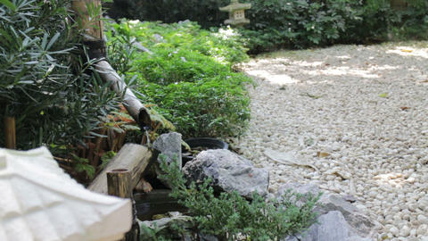 Water flowing out of a wooden spout into a japanese stone garden Live Action