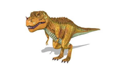 Dinosaur Tyrannosaurus Stock Video Footage