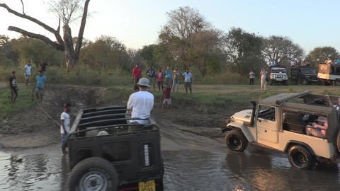 Jeep safari in the Udawalawe National Park Live Action