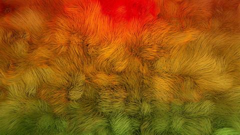 4K Abstract Underwater Kelp Fur Footage