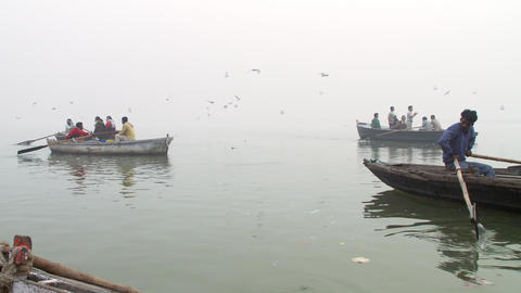 Several boats rowing along the foggy Ganges river as birds fly by Footage