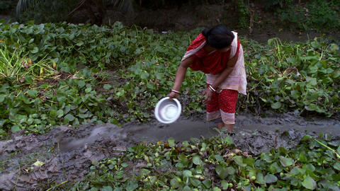 Women cultivating ground and digging and irrigating Footage