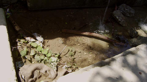 Polluted drainage ditch in India Footage