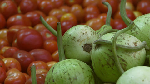 View of red and green tomatoes and a fly Footage