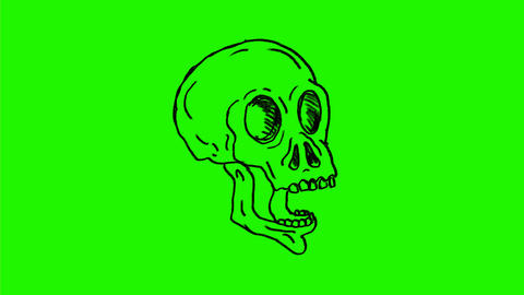 Human Skull Eye Popping Out Breathing Fire Drawing 2D Animation Animation