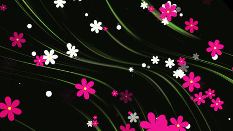 Flowers with Background Loop Animation