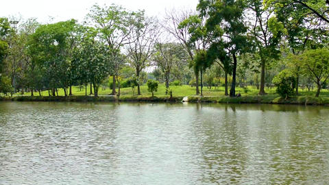 Public park with trees , river and sky background in city.Beautiful green park in the city on one Footage