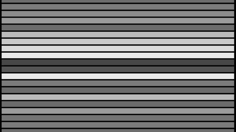 Abstract black and white line bar blink animation video Animation