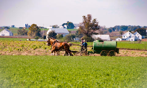 Amish Farmers spreading manure フォト