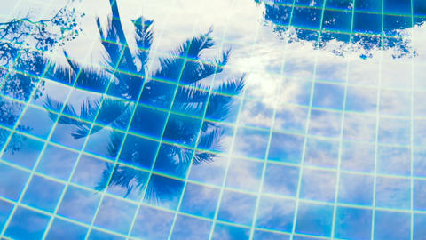 [alt video] Tropical palms reflecting in blue clear water