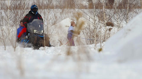 Husky dog and woman athlete during skijoring competitions Live Action