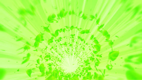 Vortex from green leaves. Spiral shiny particle of seasonal leaves. Dancing leaf. Colorful nature Animation