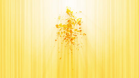 Vortex from yellow leaves. Spiral shiny particle of... Stock Video Footage