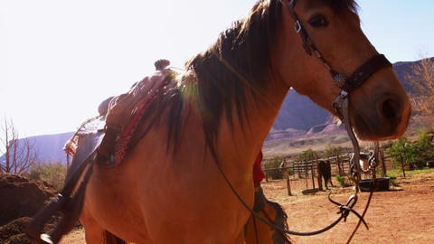 Shot of a cowboy putting a saddle on his horse with lens flare Footage