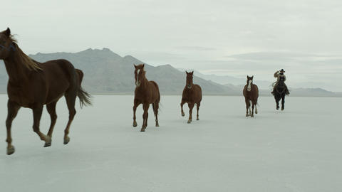 Horses running with cowboys riding across salt flats Footage