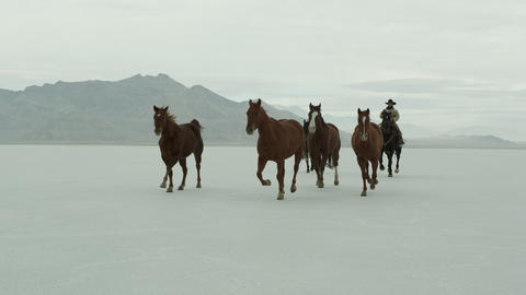 Horses running with cowboys riding across salt flats Live Action
