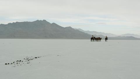 Horses walking with cowboys riding across salt flats Live Action