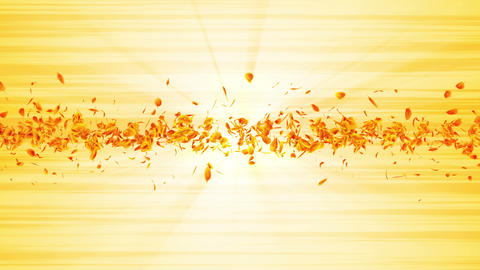 Vortex from yellow leaves. Spiral shiny particle of seasonal leaves. Dancing leaf. Colorful nature Animation