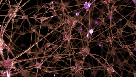 Journey through a network of neuronal cells and synapses Animation