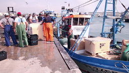 Boat being unloaded by fishermen Footage