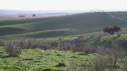 green plain with shadows and sun light in a afternoon light Stock Video Footage